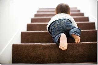 escada da evolução